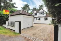 4 bedroom Detached property in Lightwater, Surrey