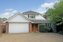 5 bedroom Detached property for sale in Lightwater, Surrey