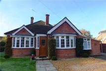 Bungalow for sale in Coxheath Road...