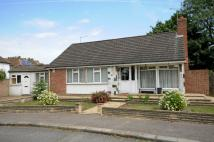 Detached Bungalow for sale in Edgware, Middlesex