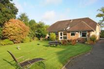 Detached Bungalow in Chobham, Surrey