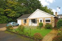 4 bed Detached Bungalow for sale in Sunningdale, Berkshire