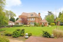 8 bedroom Detached property for sale in Ascot, Berkshire