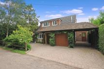 3 bed Detached Bungalow in Chobham, Surrey