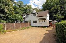 3 bed semi detached house for sale in Sunningdale, Berkshire