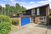 Sunninghill Detached house for sale