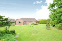 Detached Bungalow for sale in Botany Close, Thatcham