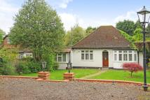 Detached Bungalow for sale in Virginia Water, Surrey
