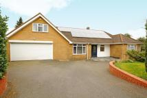 5 bedroom Detached Bungalow in South Heath...