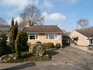 2 bedroom Semi-Detached Bungalow in Whitelands Drive, Ascot