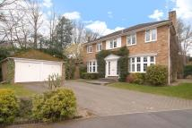 Walton Drive Detached property to rent