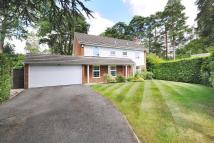 4 bed Detached home in Hurstwood, South Ascot