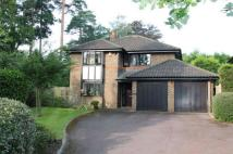 Detached house to rent in The Burlings, Ascot