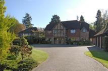 5 bedroom Detached property to rent in Woodcote Place, Ascot
