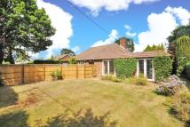 Detached Bungalow to rent in Chavey Down Road...