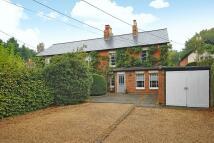 Cottage in Winkfield Row, Berkshire