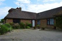 Bungalow to rent in East End Lane, Ditchling...