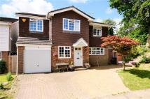 Detached property to rent in Badger Drive...