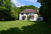 4 bedroom Detached property to rent in Broxmead Lane, Bolney...