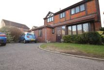8 bed Detached house in Large Student Home...