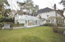 Detached home to rent in Lone Pine Drive, Ferndown