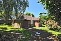 Detached Bungalow to rent in Nettlebed, Oxfordshire