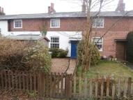 Henley on Thames Cottage to rent