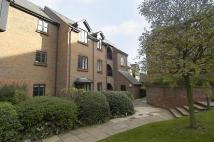 1 bed Apartment to rent in Dolphin Court...