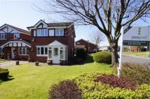 11 Detached house to rent