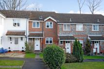 Lightwater Terraced house to rent