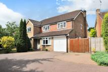 Detached property to rent in Lightwater, Deer Leap