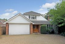 5 bedroom Detached Bungalow in Curley Hill Road...