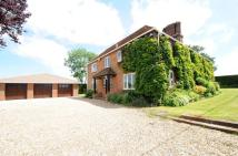 4 bedroom Detached house in Oare, Berkshire