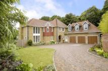 Detached home in Chobham, Surrey