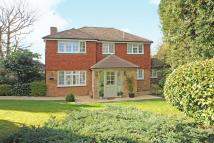 4 bed Detached house in Hawkes Leap, Windlesham