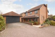4 bed Detached home to rent in Windmill Field...