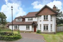 5 bed Detached home to rent in Rushmere Place...