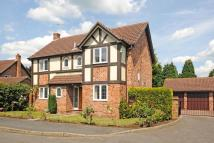 4 bed Detached home to rent in Furnival Close...