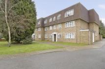 Apartment to rent in Mount Hermon Road, Woking
