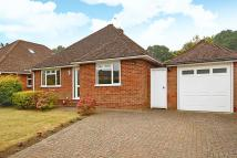 Detached Bungalow in The Triangle, Woking