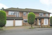 Detached house to rent in Stanmore, Middx