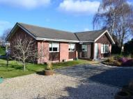 3 bed Bungalow in Deen-Leigh Pilmuir Road...