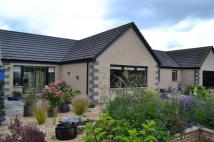 Bungalow for sale in Rowanmill,  Broom of Moy...