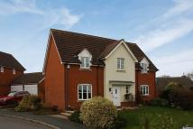 Detached property in Bullinghope, Hereford