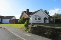 3 bedroom Bungalow for sale in Canterbury Drive...