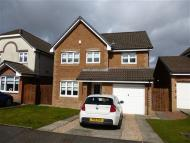 4 bed Detached home in Manus Duddy Court...