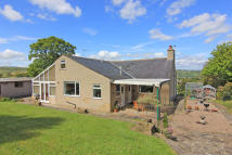 Detached Bungalow for sale in Craggburn, Cragg Lane...