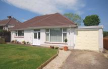 5 bedroom Detached Bungalow in 16 Glynderwen Close...