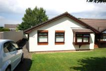 3 bedroom Detached Bungalow in 135 Mackworth Drive...