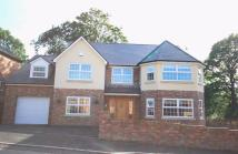 4 bed Detached house in 35 Nant Celyn, Crynant...
